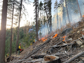 Spring prescribed burning to begin across Idaho Panhandle National Forests | North Idaho News Now