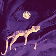 Purple Leopard illustration Art