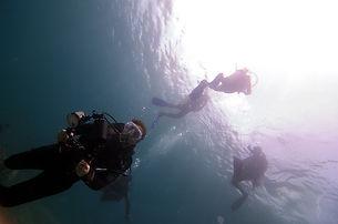 Komodo Island underwater life