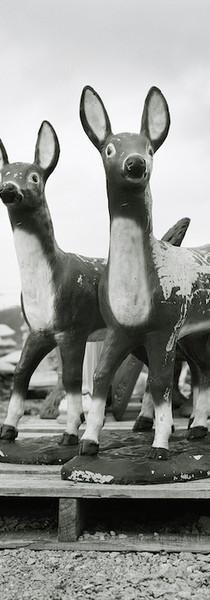 Deer Pallet