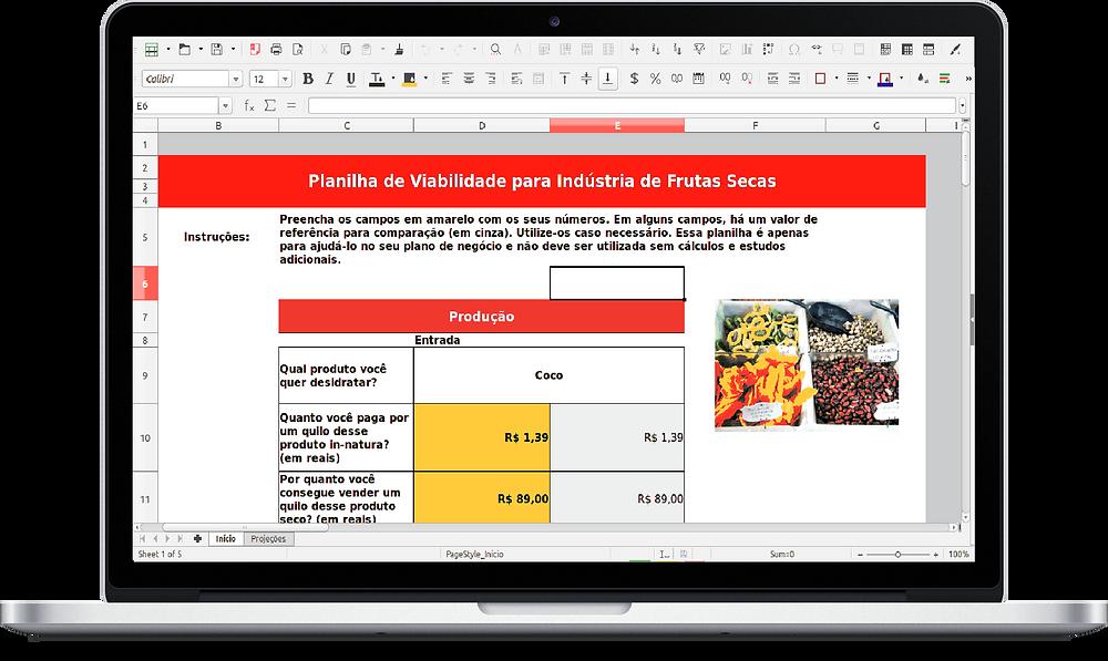 Planilha de viabilidade para indústria de frutas secas