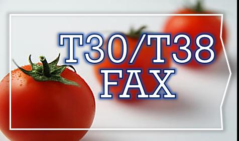 T38 FAX