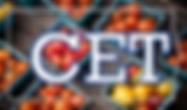 CETはコマンド・エミュレーション・テストツール