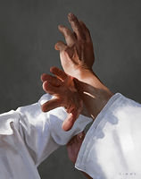 dimme-mcwood-aikido-hands-ikkyo-lores.jp