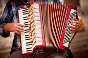 akordeon gracza