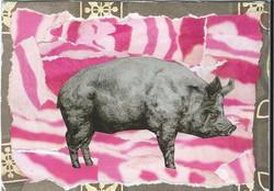 Piggie wonderland