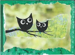 Owly land