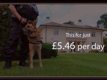 What does home security cost?