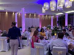 Vertical Wash Up Light Wedding Event