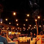 Festoon string lights wedding event