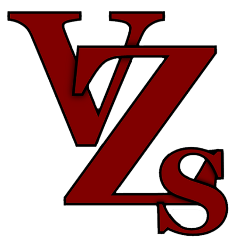 VZS_Logo%252520(No%252520Background)_edited_edited_edited.png