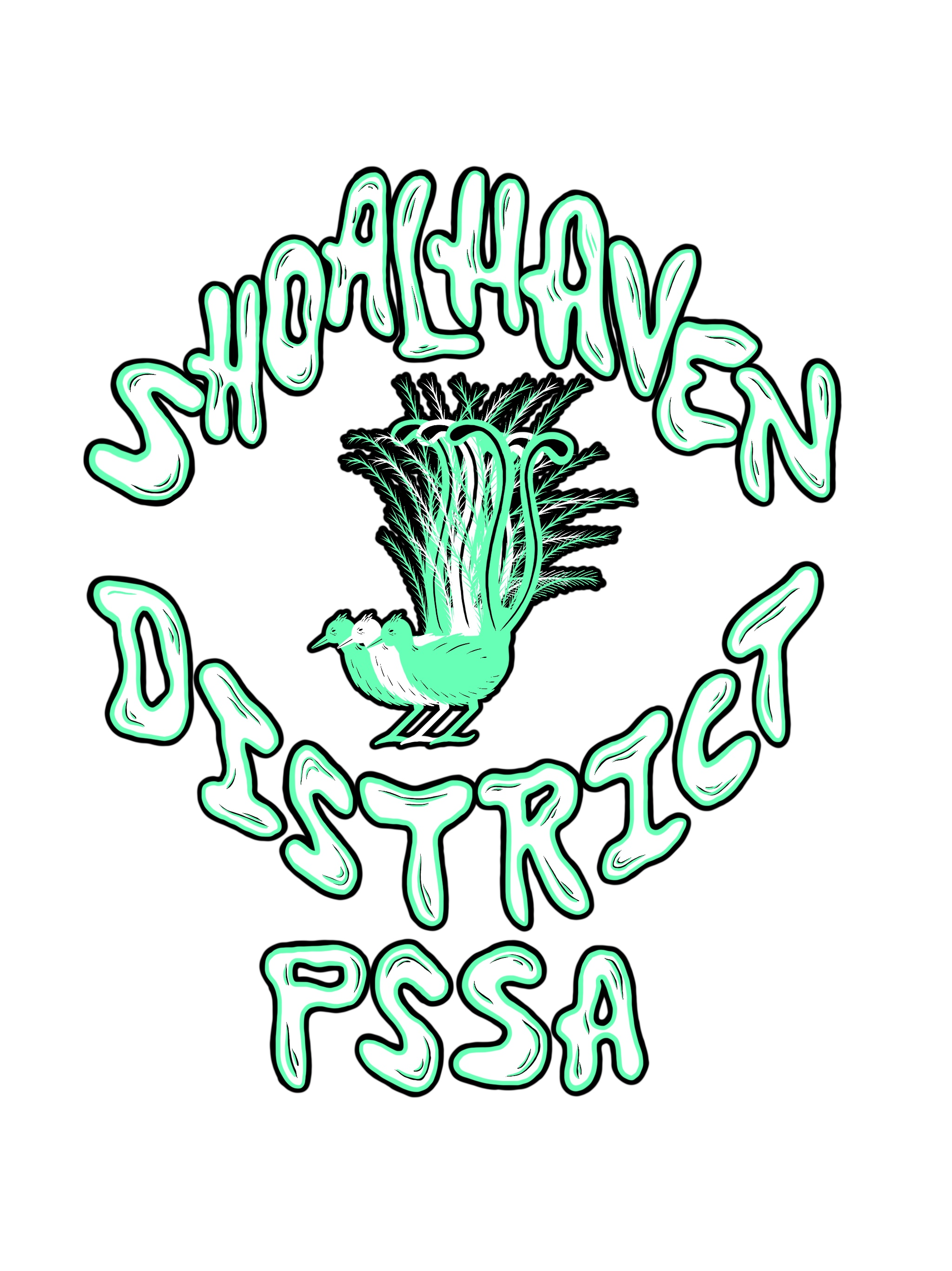 Shoalhaven District PSSA