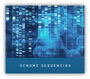 Genome Sequencing WGS