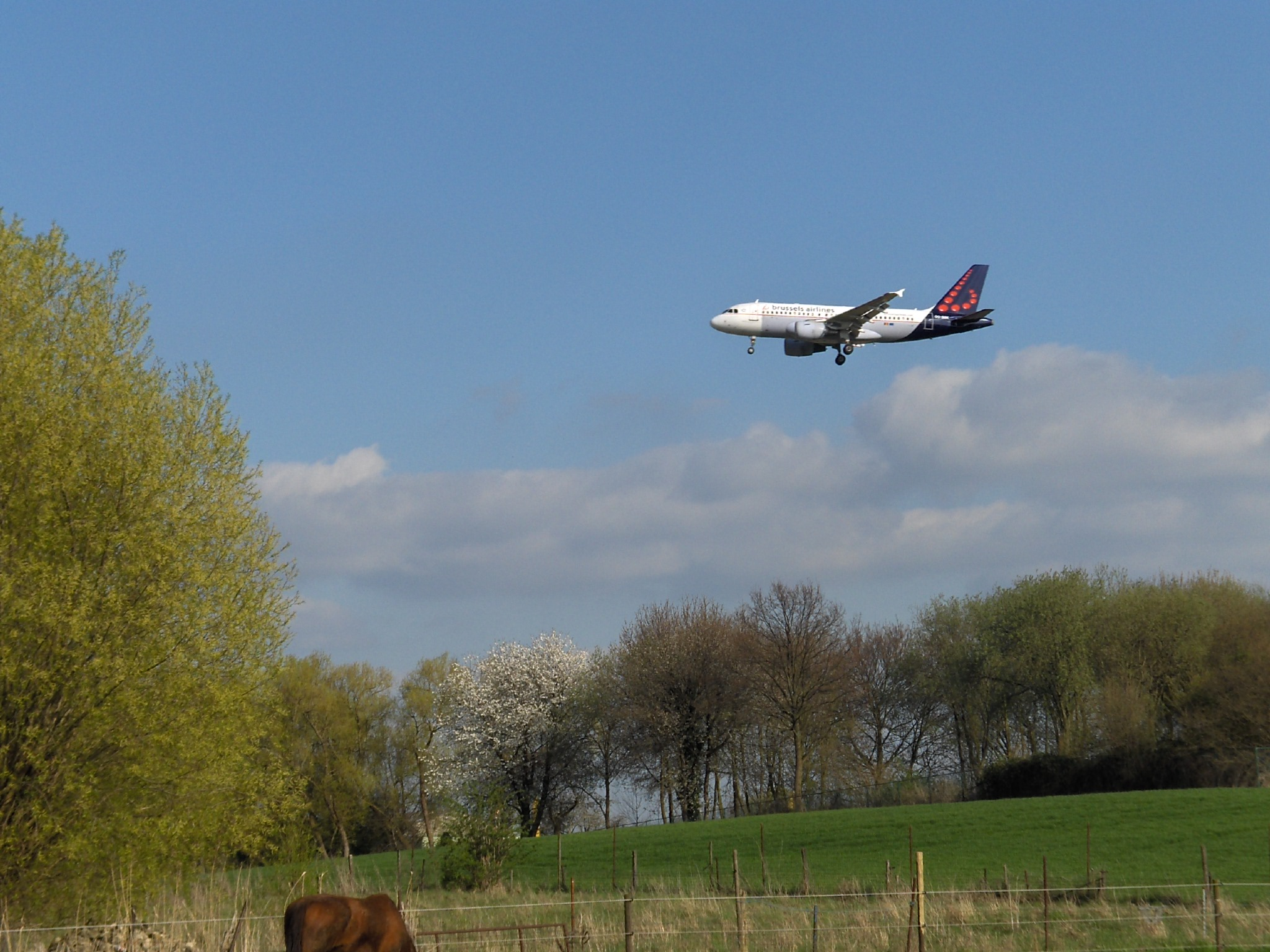 Belgio, Landing