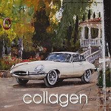mini collagen.jpg