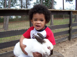 rabbit_child_medium