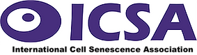 ICSA Header.png