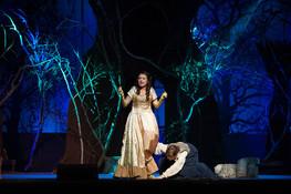 Cinderella- Into the Woods