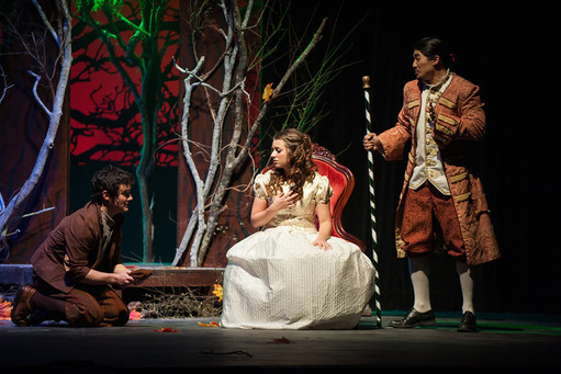 Cinderella- Into the Woods