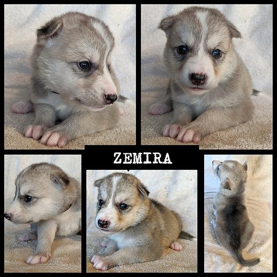 Zemira