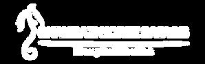 BHS H Logo in BW - dark background - S e