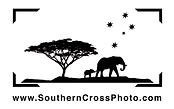 Logo Southern Cross Photo.png
