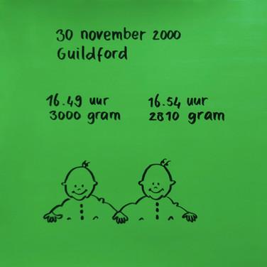 2000-2001 Robert en Willem geboortekaartje