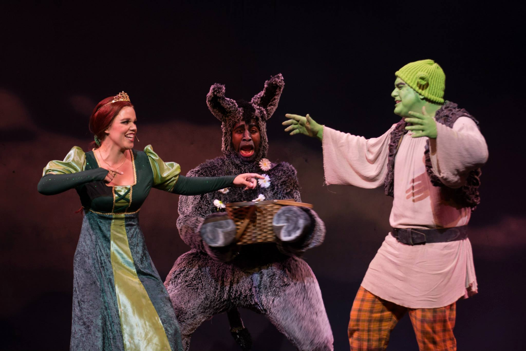 Princess Fiona in SHREK: THE MUSICAL