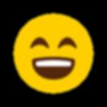 iconfinder_Emoji-05_5159510.png