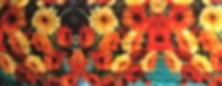 poppies web 2020.jpg