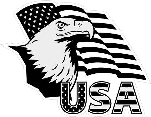 USA Eagle Flag decal sticker