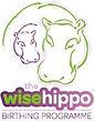 twh-birthing-programme-logo-block-395x50