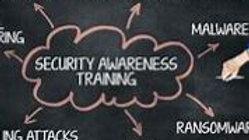 Security Awareness Training - Essentials (Per Employee, Per Annum)