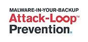Attack Loop.jpg