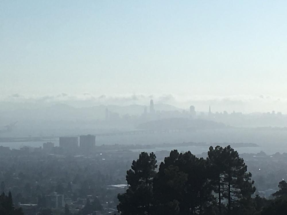 LBNLから見えるサンフランシスコ