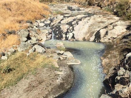 アメリカ西海岸出張その5 -Wilbur Hot Springs-