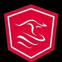 Angular-sydney-logo.png