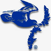 PCC logo.jpeg