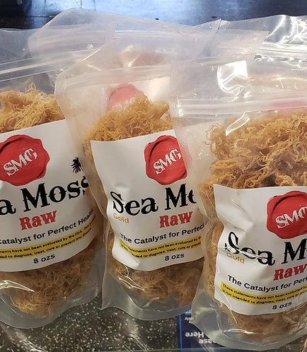 1 LB Sea Moss Gold Raw