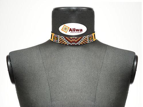 Collar Shocker