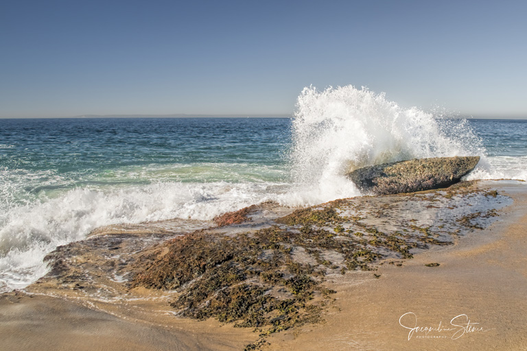 Along the California Coast