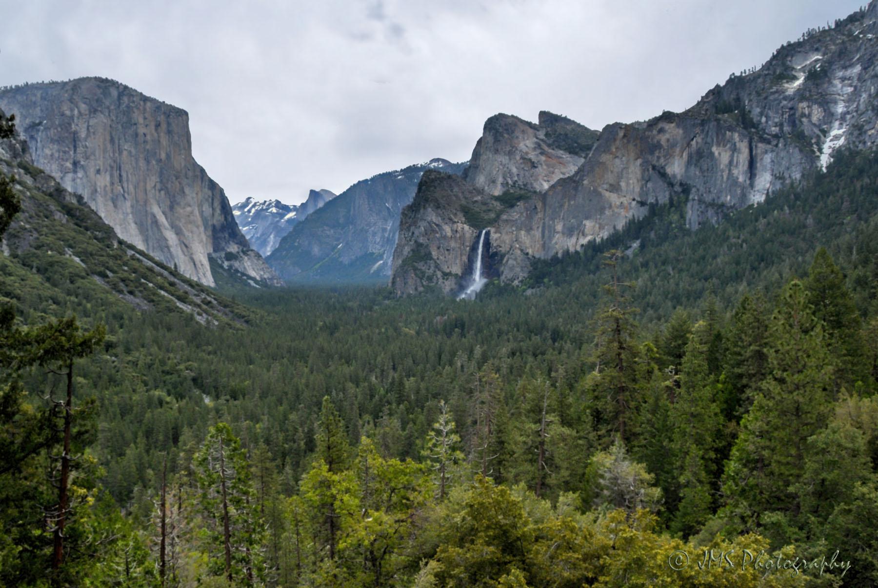 Yosemite National Park (CA)
