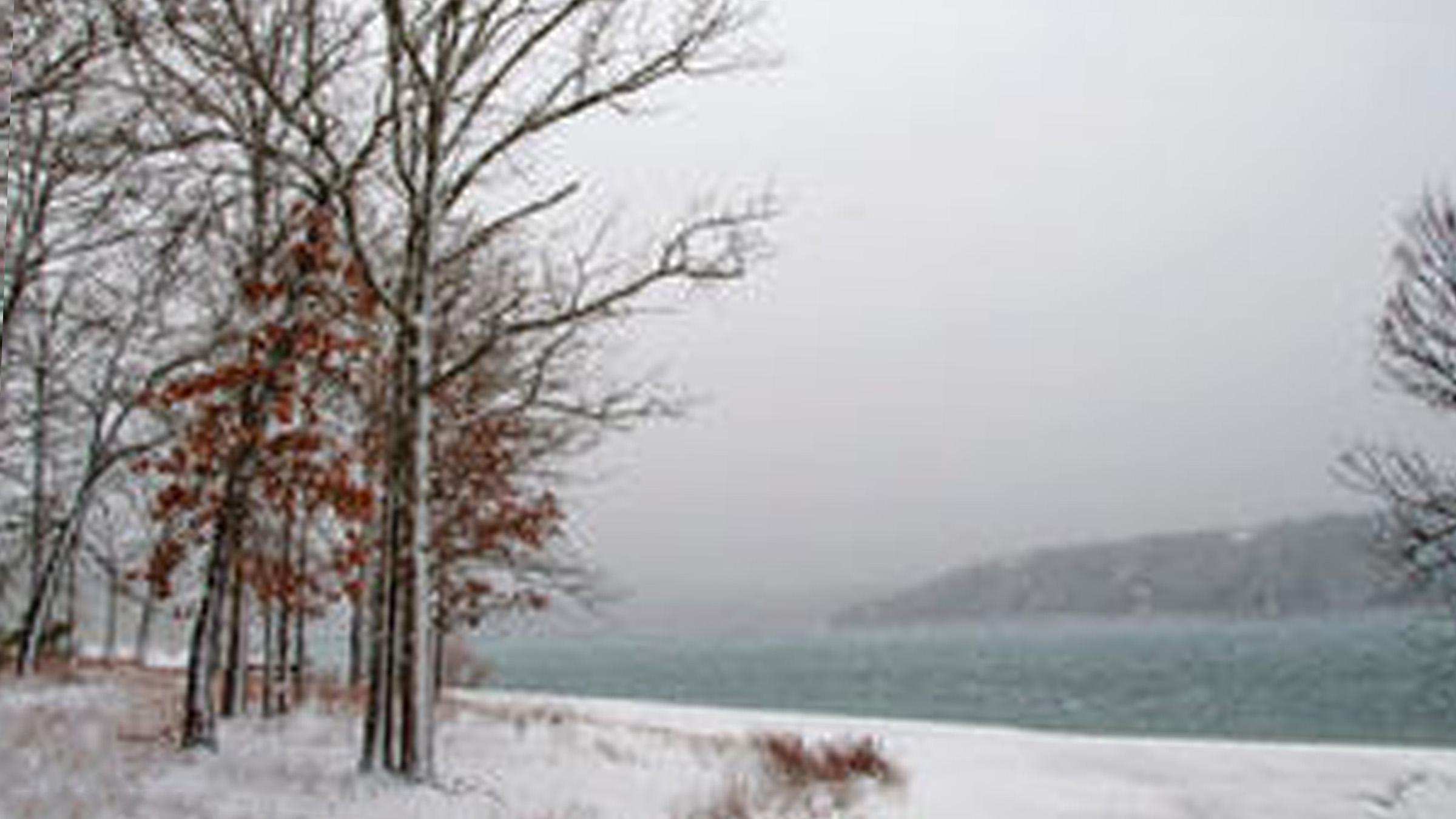 Winter at Joe Bald Park