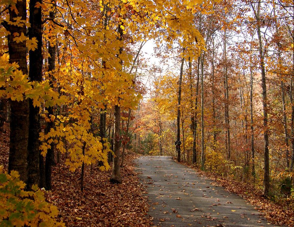 Glorious Autumn at Dogwood Canyon