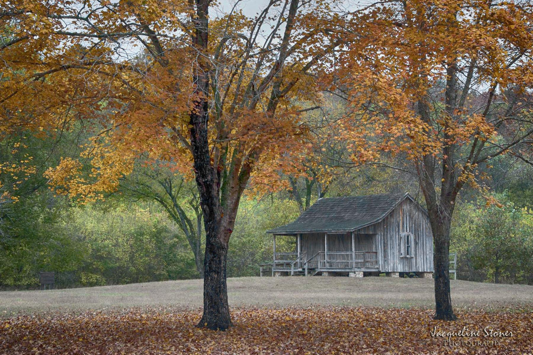 Cabin at Big Springs
