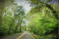 McNeely Road in Bella Vista, AR