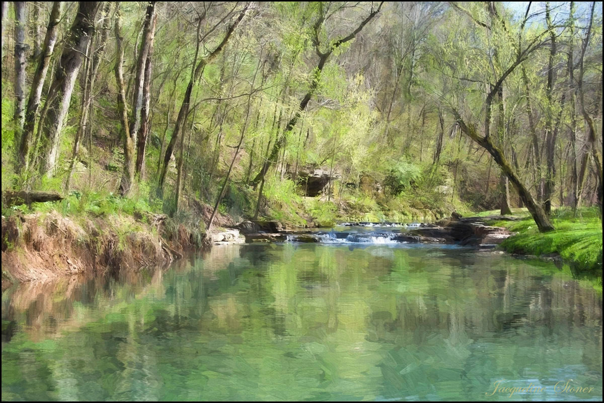 Early Spring at Dogwood Canyon
