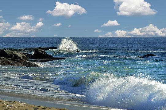 FB Laguna Beach CA 8574.jpg