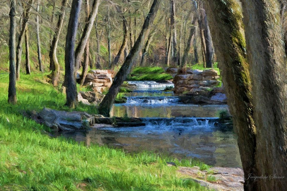 April in Dogwood Canyon