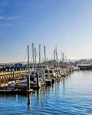 SM 16 X 20 Fisherman's Wharf Monterey_DS